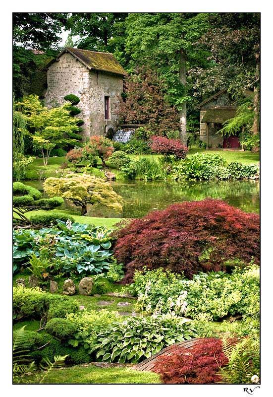 Images petit jardin japonais meilleures id es cr atives pour la conception de la maison for Images petit jardin japonais